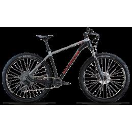 Bicicletta Bottecchia Gavia...